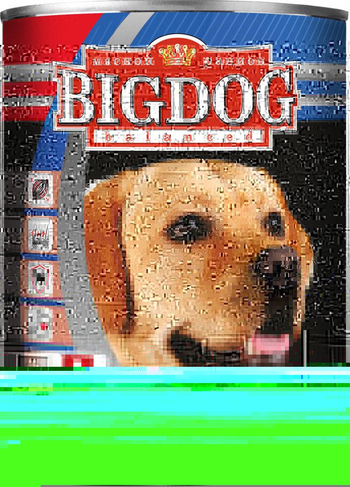 Отзывы о Корме для собак Зоогурман Big Dog balanced Ягненок с рисом 850г