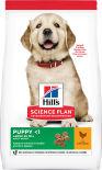 Сухой корм для щенков Hills Science Plan для крупных пород с курицей 12кг